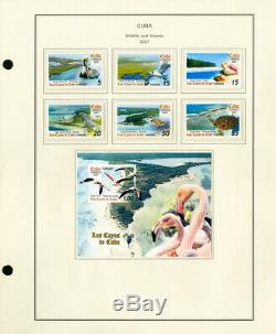 Caribbean All Mint NH 2006 to 2012 Nearly Complete Stamp Collection